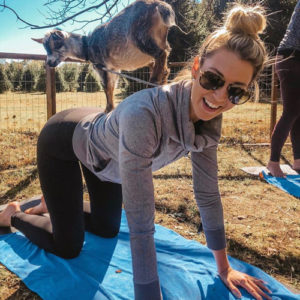 Mad-Lavender-Farm-Goat-Yoga