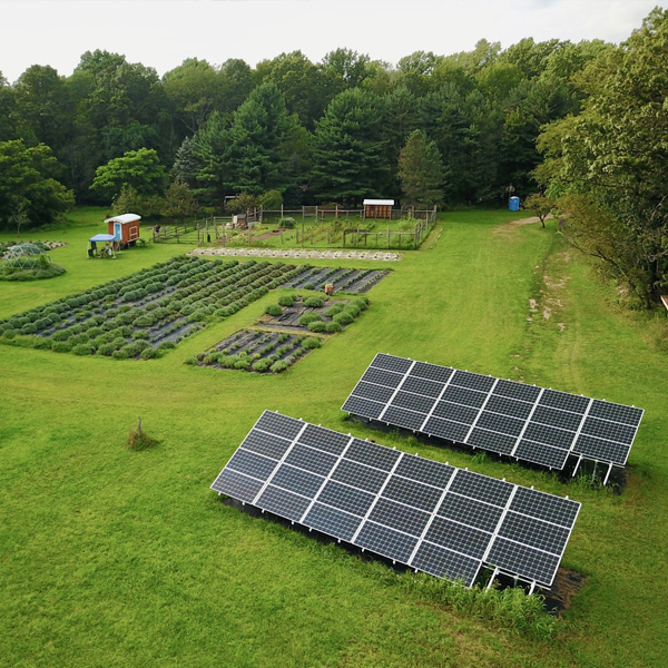 Solar-panels-at-Mad-Lavender-farm