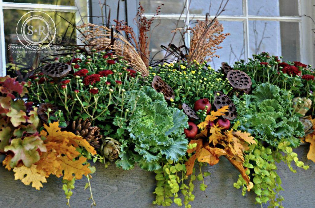 Fall Window Planter
