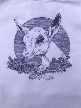 Baby goat on onesie
