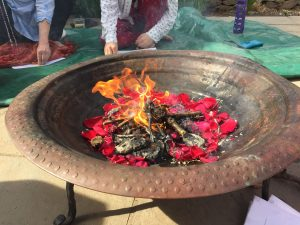 Agni Hotra Fire Ceremony with rose petals