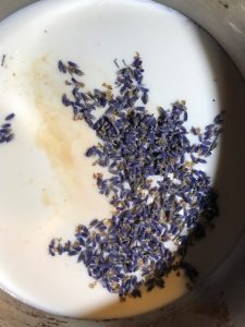 lavender buds in hot milk