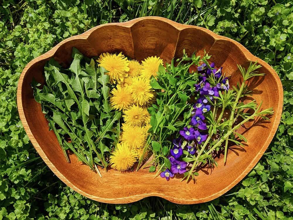Foraged Spring herbs