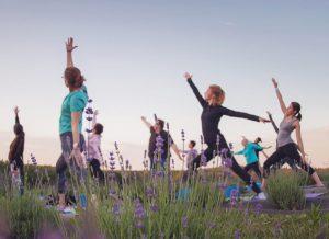 Lavender Yoga Milford NJ