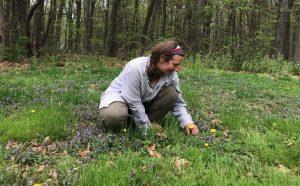 Kate Moxham, Herbalist