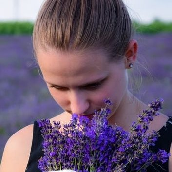 Pick your own lavender at Mad Lavender Farm