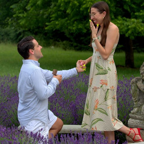 Proposal at Mad Lavender Farm