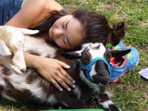 Restorative Baby Goat Yoga
