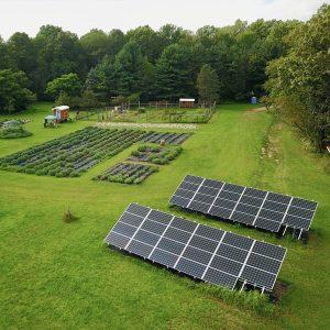 Solar-panels-at-Mad-Lavender-farm